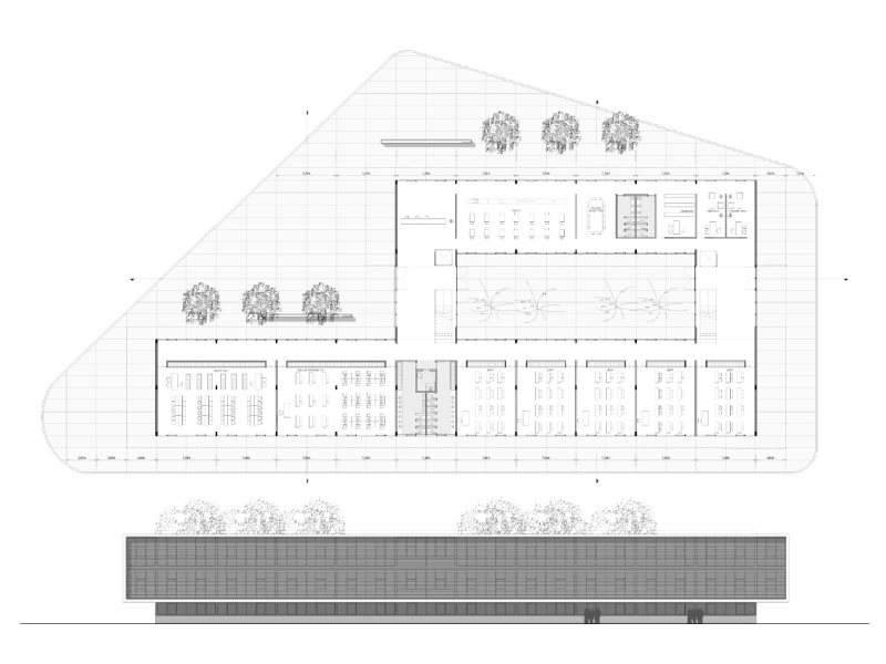 Universidad de Centenario